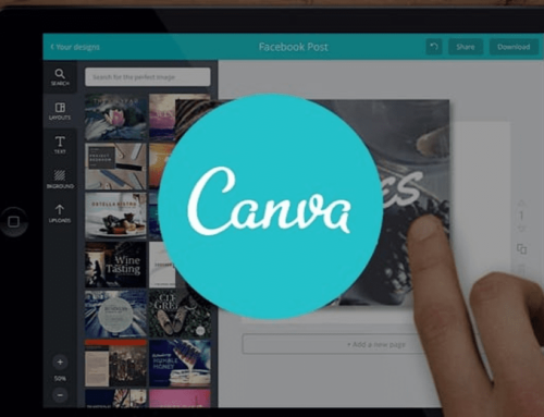 The Canva Story